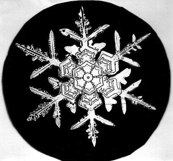 Bentley_Snowflake4