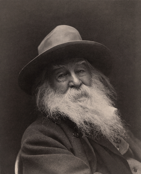 an essential human respect reading walt whitman during troubled
